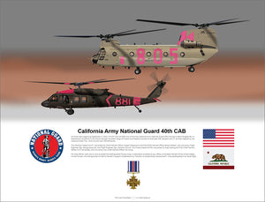 California National Guard CH-47 and Black Hawk 40th CAB Rescue - Distinguished Flying Cross