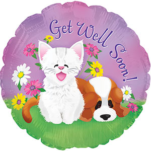 Get Well Puppy and Kitten