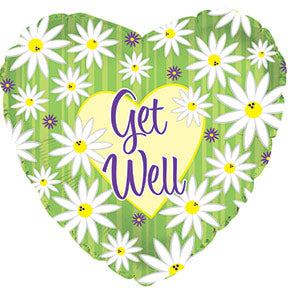 Get Well Green Stripes and Daisies