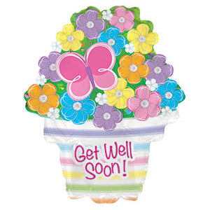 Get Well Soon Flowers and Butterfly