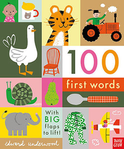 100 First Words : With Big Flaps To Lift - Edward Underwood