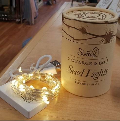 Seed Lights - Charge & Go with USB -Silver