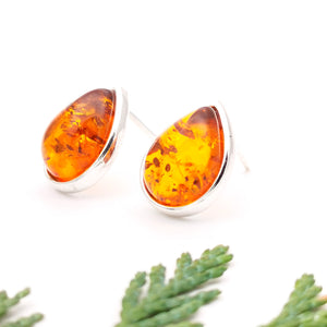 Teardrop Baltic Amber Silver Stud Earrings