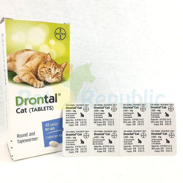 BAYER Drontal For Cat 1pcs - Pet Republic Jakarta