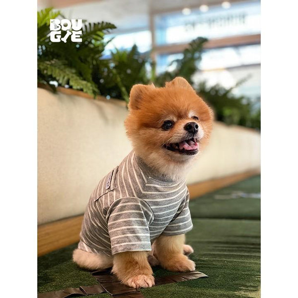 BUTIKDOGGY Gray Striped TShirt Pet Fashion ButikDoggy