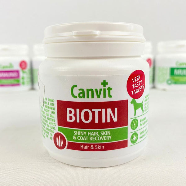 CANVIT Biotin for dogs 100g Pet Vitamin and Supplement Canvit