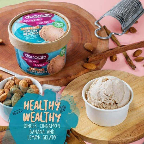 DOGOLATO Gelato Healthy Wealthy - Pet Republic Jakarta