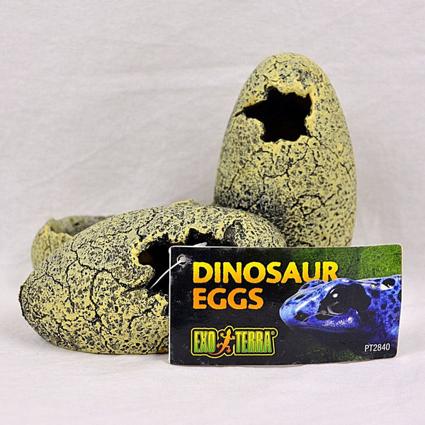 EXOTERRA Dinosaur Eggs Hide and Water Dish Small Reptile Habitat Accesories Exoterra