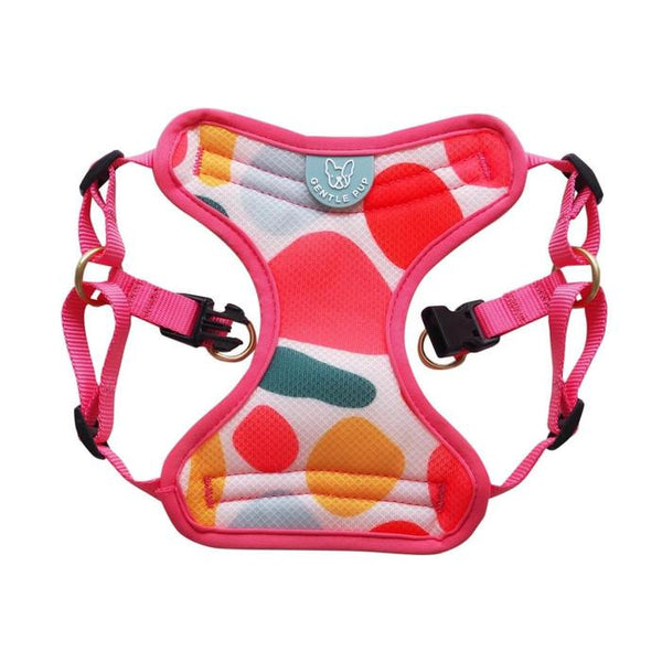 GENTLEPUP Harness Candy Callie Pet Collar and Leash Gentle Pup Small