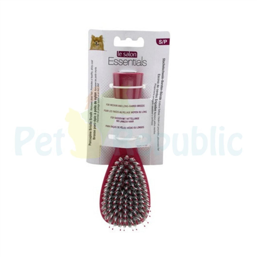 LE SALON  Essential Porcupine Bristle Small - Pet Republic Jakarta