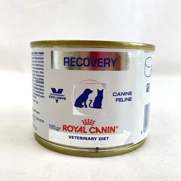 ROYALCANIN Recovery Wet Food 185g Cat Food Wet Royal Canin