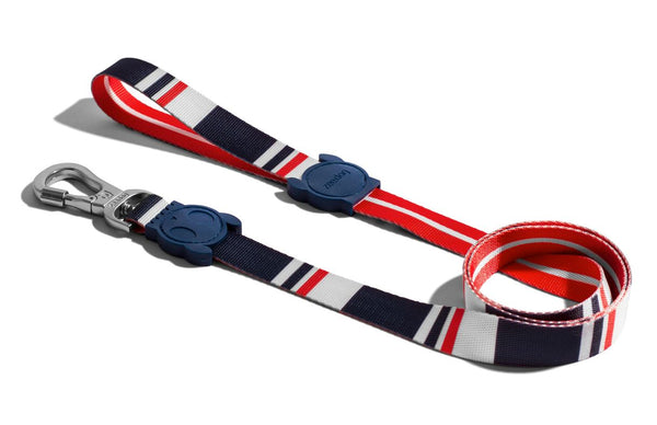 ZEEDOG Leash ROCKET Pet Collar and Leash Zee Dog