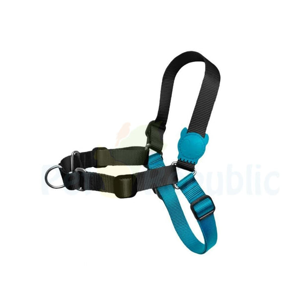 ZEEDOG Soft Walk Harness MONOBY - Pet Republic Jakarta