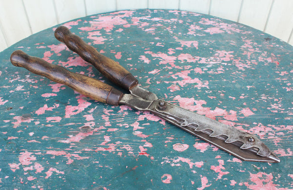 An Unusual Pair of Vintage Shears with Notched Blade