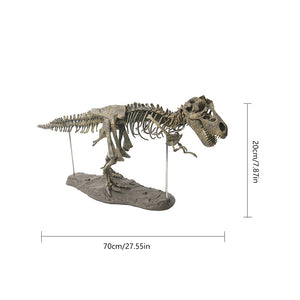 T-rex Skeleton Model - Trending Pro