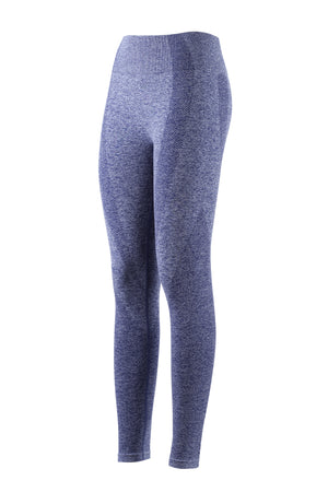 Training Seamless Legging