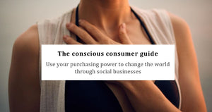 Free Guide The Conscious Consumer - E-Book Kindleggings.com