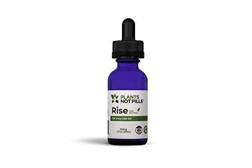 Plants Not Pills Organic Hemp Extract || 1200mg || Grown and Made in The USA || Pain Relief | Anxiety Relief || 1 Fl Oz. (30ml) || Mint Flavor