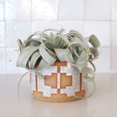 Geometric planter no. 1