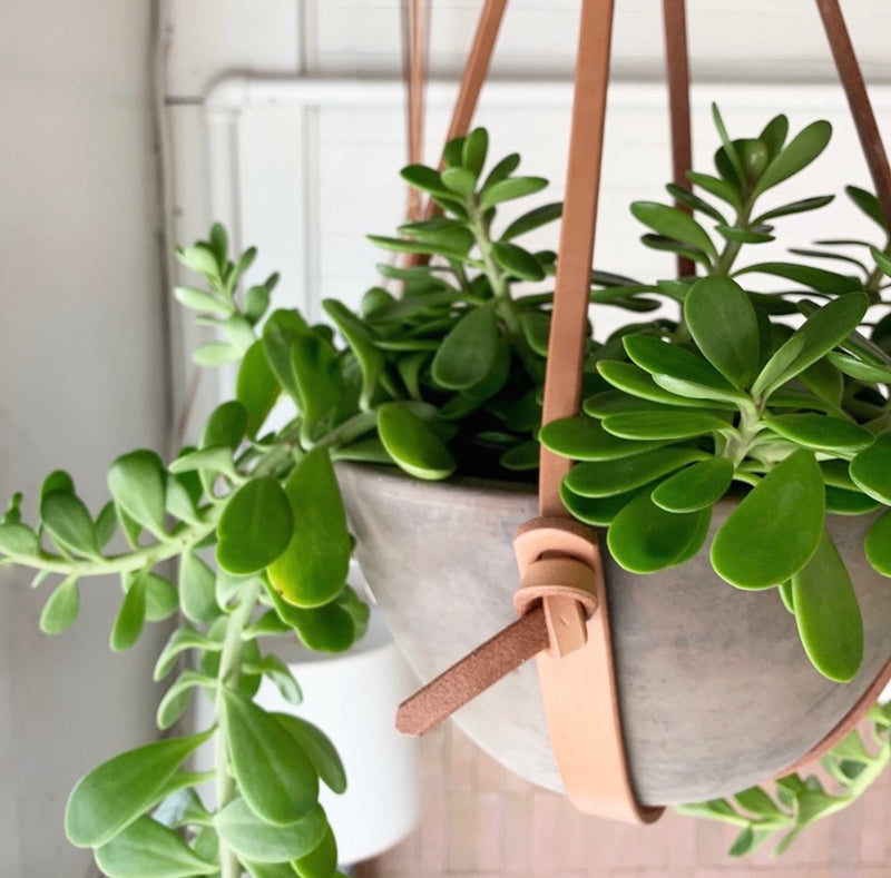 Hanging leather planter