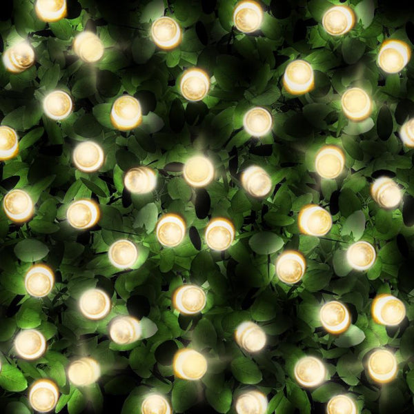 200 Warm White LED Solar Fairy Lights (without USB)