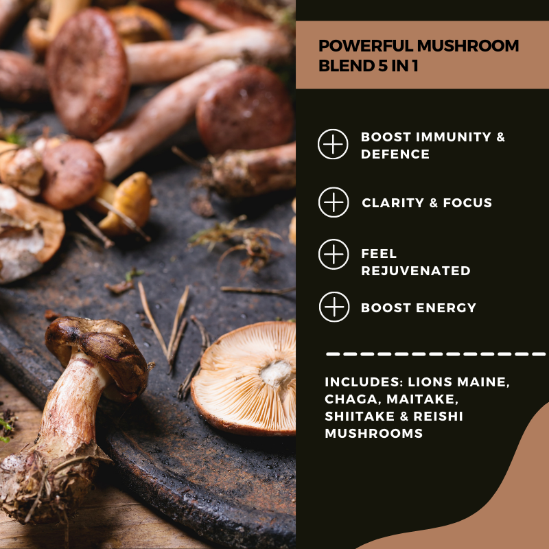 Mushroom herbal blend capsules