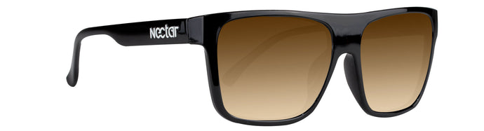 EMPIRE Polarized TR90 (Braun | Braun)