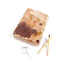 Adventure Authentic Fossil Excavation Kit