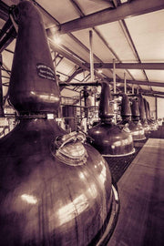 Spirit and Wash Stills Laphroaig Distillery Sepia Toned Fine Art Print by Wandering Spirits Global