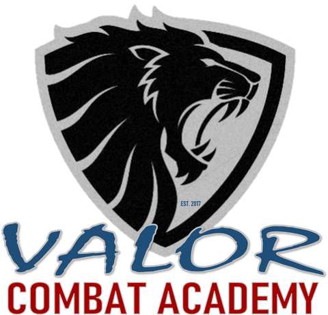 Valor Combat Academy Summer Camp