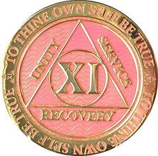 Recoverychip 11 Year AA Medallion Reflex Pink Gold Plated Chip
