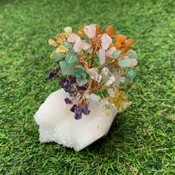 Mixed Money tree with clear Quartz base