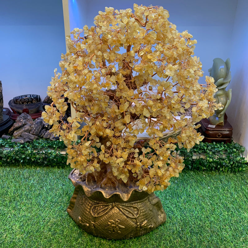 Citrine Money Tree 23x16""