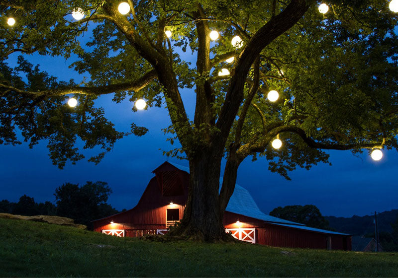 loftek led rgb ball light hanging on tree