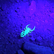loftek 51 uv black light for tracking scorpion