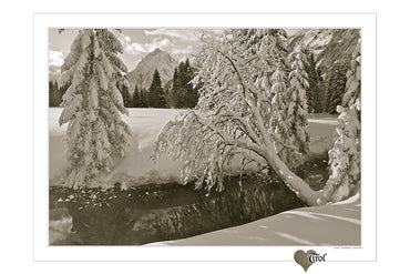 "Poster ""Schneeweiss"" Sepia"