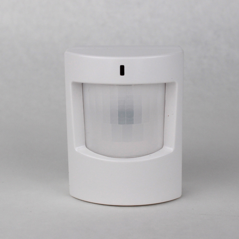 Motion Detector - Local Security
