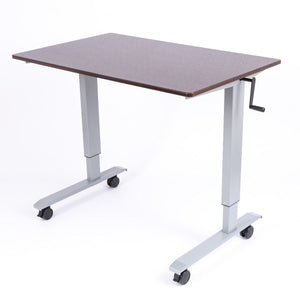 "Luxor 48"" High Speed Crank Adjustable Stand Up Desk - AlzaDesk"