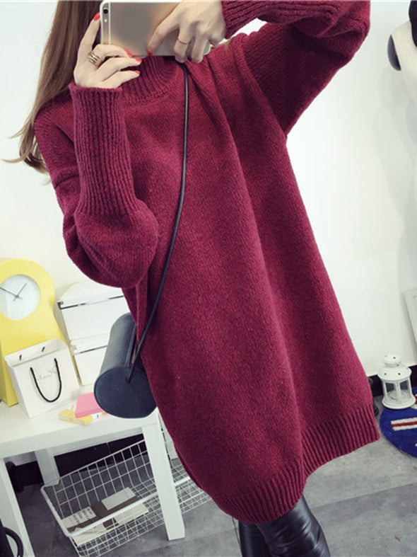 Turtle Neck Long Sleeve Casual Dress