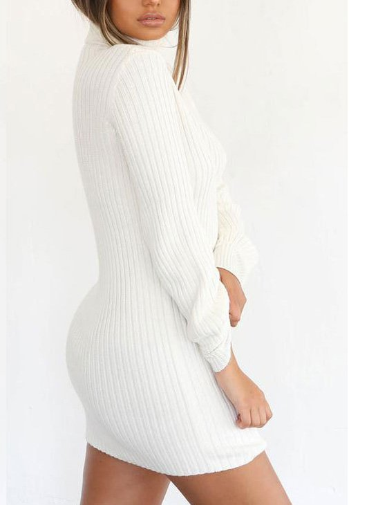 Sheath Long Sleeve Casual Dress