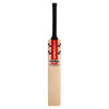 GN DELTA SENIOR CRICKET BAT
