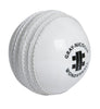 GN SAFETY CRICKET BALL