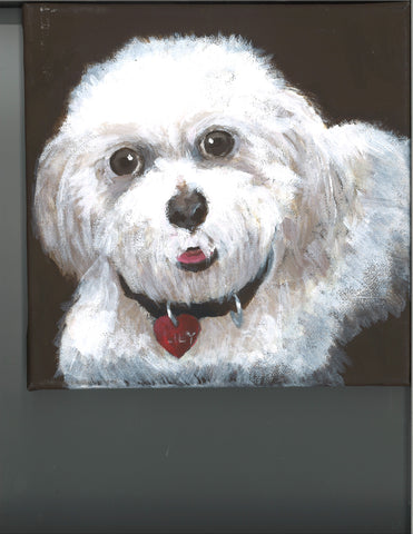 My Dog Lily by Cailyn Park Age: 12