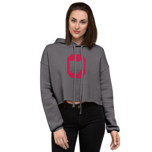 Ohio Cropped Hoodie