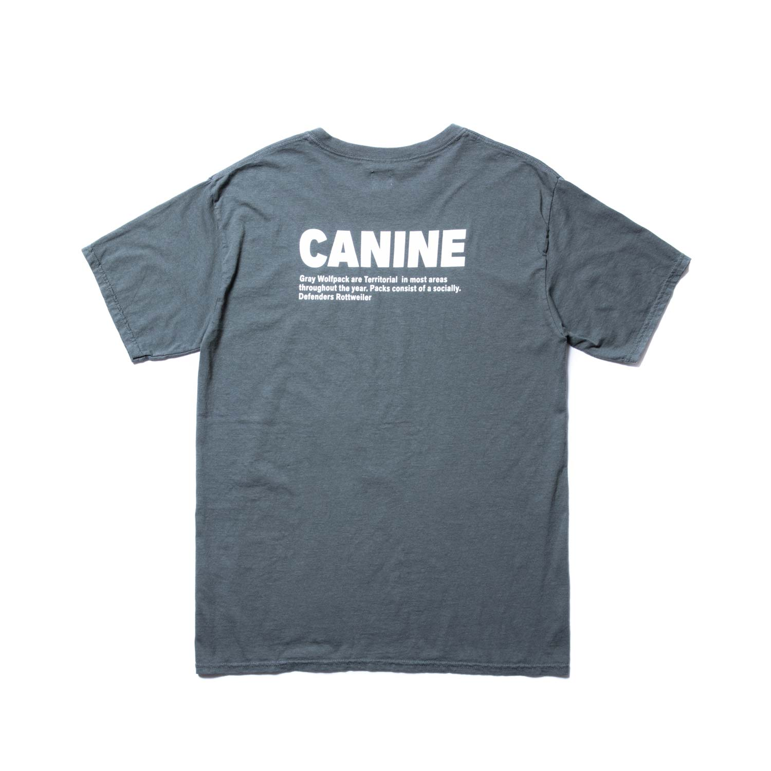 ROTTWEILER / Military Tee (OLIVE)