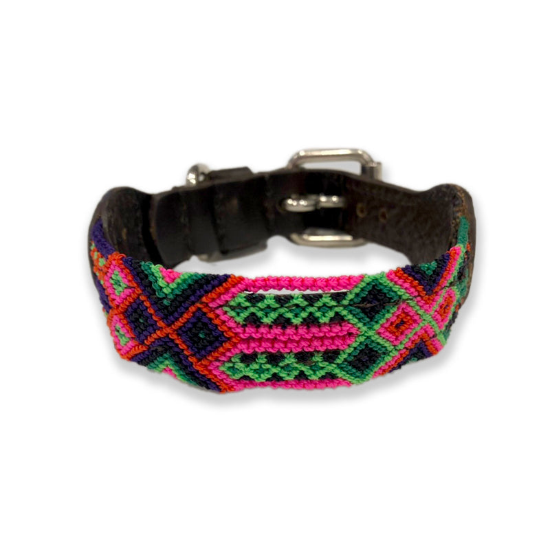 ECLECTIC ARRAY / DOG COLLAR (Water Melon/XS)