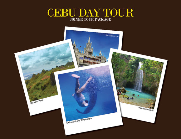 CEBU DAY TOUR PACKAGE OPTION 7 ( WHALESHARK, INAMBAKAN FALLS, OSMEÑA PEAK, SIMALA )