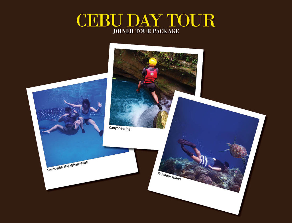 CEBU DAY TOUR PACKAGE OPTION 8 ( WHALESHARK, PESCADOR ISLAND HOPPING, CANYONEERING )