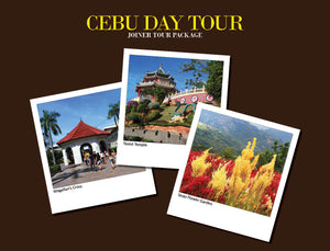 CEBU DAY TOUR PACKAGE OPTION W ( WITH TEMPLE OF LEAH AND SIRAO FLOWER GARDEN )