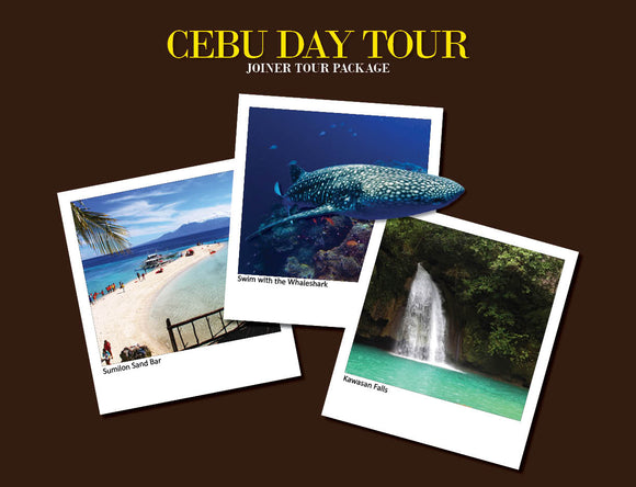 CEBU DAY TOUR PACKAGE OPTION Y ( WHALESHARK, SUMILON SAND BAR, KAWASAN FALLS )